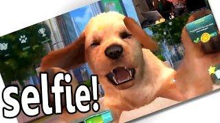 Cutest virtual dog EVER!!!    Let