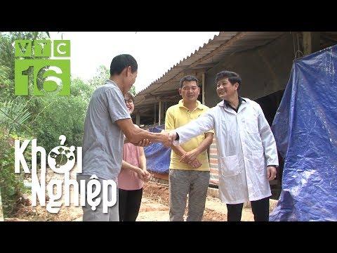 Chàng kỹ sư khởi nghiệp nuôi gà sạch theo chuỗi | Khởi nghiệp 484 | VTC16