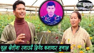 फुल खेतीमा रमाउदै ब्रिगेडर मुनाल - जन_युद्द पछिको चुनौती सामाना गर्दै munal gharti