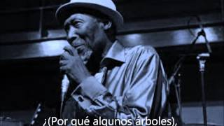 Alton Ellis  why Birds follow spring subtitulado español