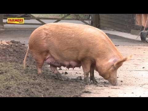 Farmers Apprentice presenter meets JB Gill