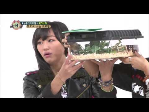 주간아이돌 - (Weeklyidol EP.83) SISTAR19 Hyorin loves snake