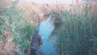 Haleji Lake, Thatta, Sindh
