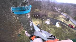 Arborist Tree Removal Featuring Home Made Throw Ball Cannon