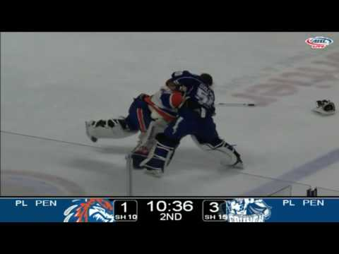 hockeyfightsplus