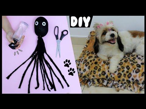 DIY PETs 🐾 🐶 Caminha, Brinquedo, Educador De Xixi E +