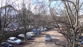 Point Presse - Élagage des Tilleuls des Terreaux Vauban - Édition 2015 à Avallon (89)