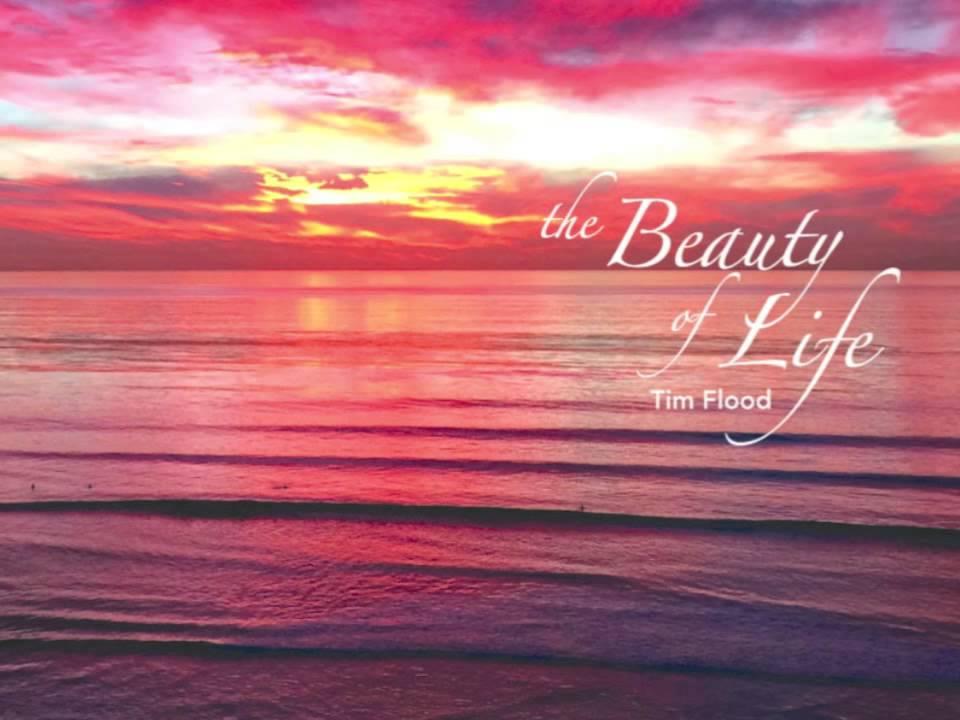 the beauty of life 4 dagen geleden  braden foulkes – the beauty of life (ep) format: cd – digital / label: eigen  beheer releasedatum: 27 april 2018 tekst: peter marinus.