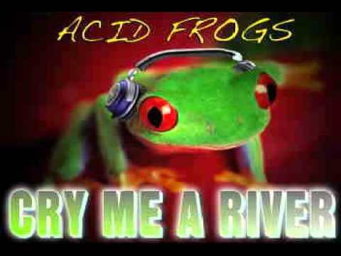 ACID FROGS - CRY ME A RIVER mp3