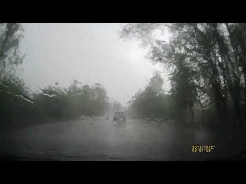 Дождь. Киреевский район, Липки, 8 мая 2019