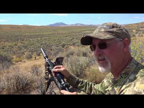 Windy Nevada Hunt