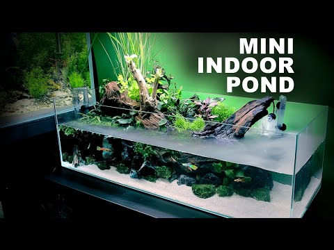 Aquascape Tutorial: Indoor Mini Pond Aquarium (How To: Full Step By Step Guide, Planted Fish Tank)