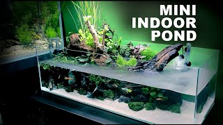 Aquascape Tutorial: Indoor Min…