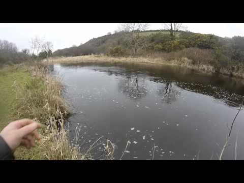 Trout, Pike And Salmon Fishing In Ireland