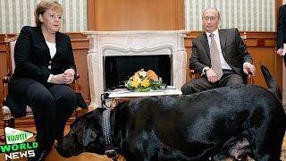 Vladimir Putin: I Didn