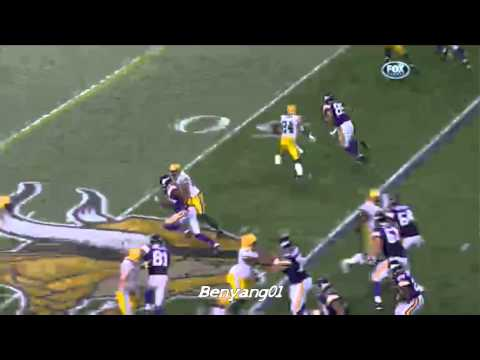Charles Woodson Highlights HD