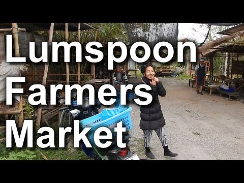 Lumspoon Organic Farmers Market (Vegan Pizza Earth Oven)