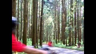 GL400で林道ツーリングに.