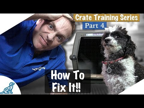 Crate Training Isn't Working - Crate Training Part 4 - Professional Dog Training Tips