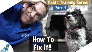 Crate Training Isn't Working  Crate Training Part 4  Professional Dog Training Tips