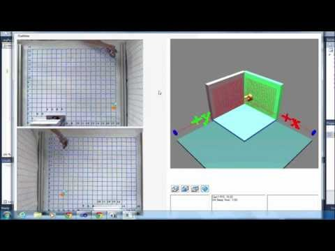 3D Position detection with Image Processing