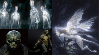 Wudjau FB-Live - What Do Fairies, Spirits, and Aliens have in common?