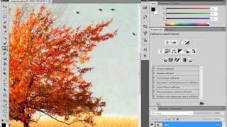 Инструмент «Штамп» в Adobe PhotoShop CS5 (35/51)