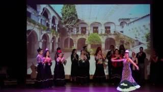 Fin de Fiesta Buleria-Azulmavi Flamenko Gösterisi 2016