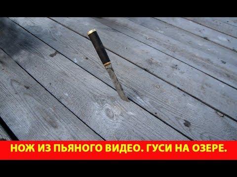 Нож из пьяного видео Гуси на озере YouTube