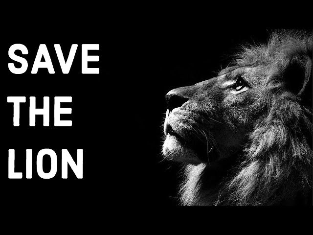 Why are Asiatic Lions in Gir Forest National Park dying - Save the Lion Initiative - Current Affairs