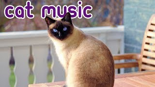 15 HOURS of Deep Stress Relief Cat Music! Music to Help Your Cat Sleep