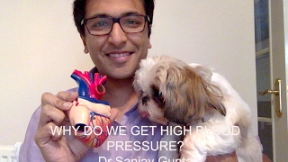 Why do we get high blood pressure?