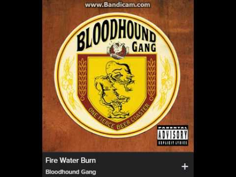 Bloodhound Gang   Fire Water Burn (explicit)