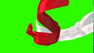 Green Screen Cloth | cloth Formation
