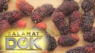 Salamat Dok: Mulberry | Cure Mula sa Nature