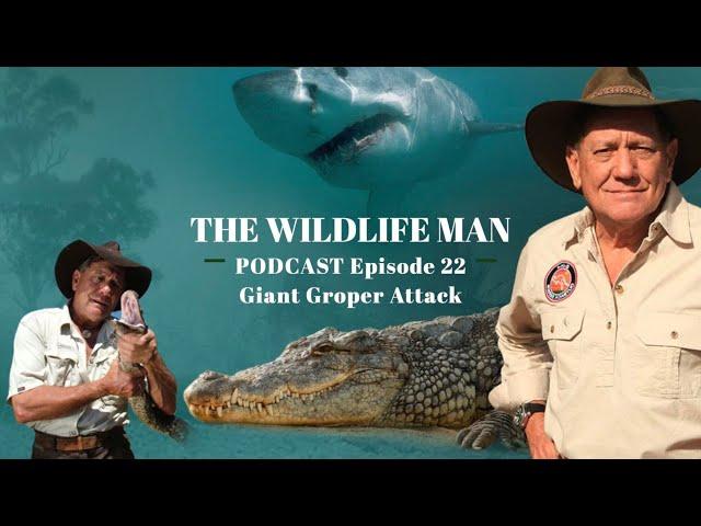 The Wildlife Man Podcast - Episode 22 - Giant Groper Attack
