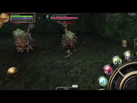 Izanagi Online: Lv 82 Specter Carnage Solo (Priest)