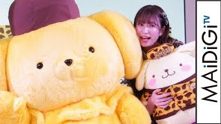 アイドルグループ「NMB48」とサンリオのキャラクター「ポムポムプリン」がコラボすることが1月31日、明らかになった。同日、東京都内で開催のサンリオの展示会「SANRIO ...