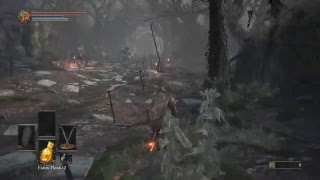 Dark souls 3 Co-op run