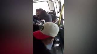 Video: Acosó a dos nenas en un colectivo, trató de huir por la ventana y lo detuvieron