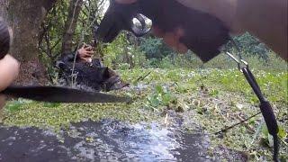 Sniffer Dog Finds Man In Swamp