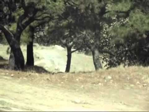 duatlon buff tala 2011 Marco Quintana ASGARD Fitne...