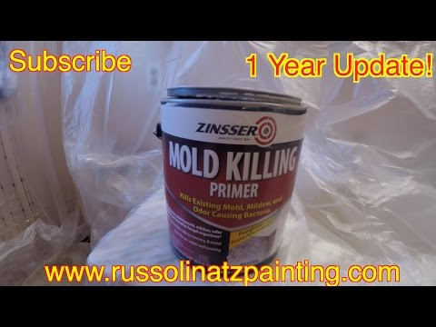how-to-kill-mold-and-mildew-stains-on-a-shower-ceiling-(part-3)---zinsser-perma-white