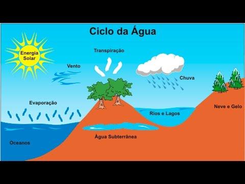 Curso Meio Ambiente - Ciclos da Natureza