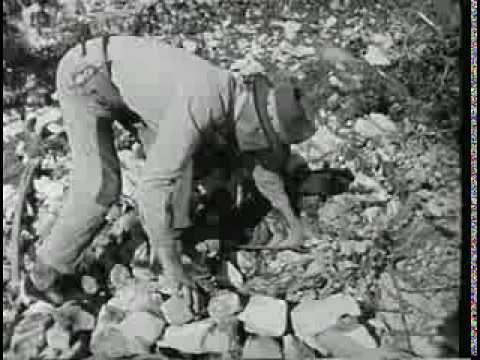 Korčula 1960.