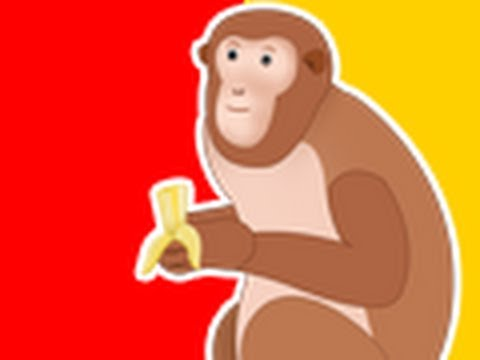 Banana Saga : Monkey and Elephant Ways to eat Banana ? Should humans eat like monkeys?