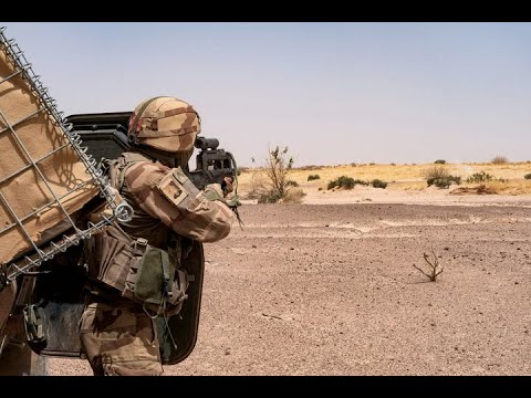 French Foreign Legionnaires kill two jihadists in Mali - March 2020