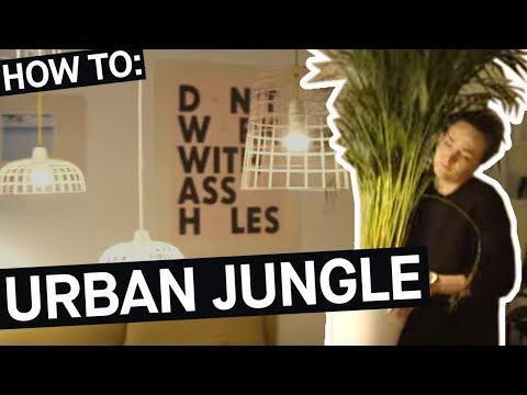 How to: Mit Zimmerpflanzen zum Urban Jungle || PULS Reportage