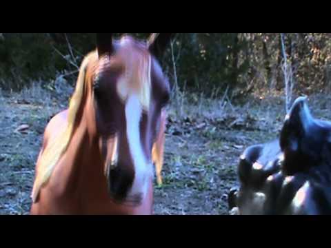 Devoured -Episode1-