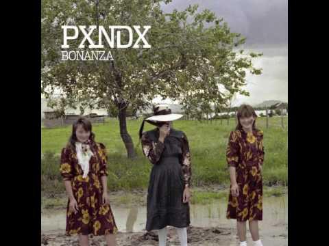 Pxndx - Bonanza en 8 Bits - Danny Hdez